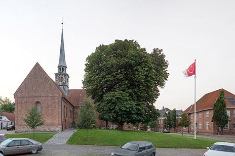 flag_2_anna_borgman
